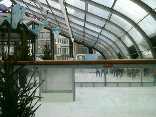 Hotel Albert II : indoor ice rink