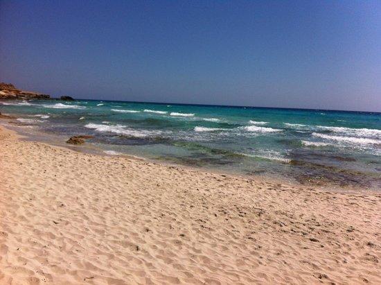 Insotel Club Maryland: spiaggia affaccio Hotel