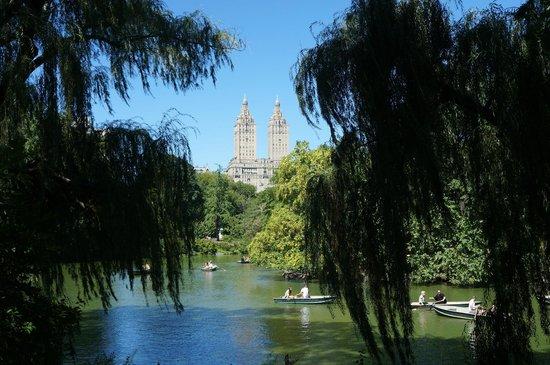 Holiday Inn Express New York - Manhattan West Side: Central park