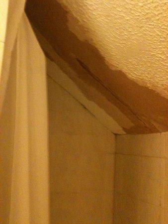 Hallam Hotel: Damage in shower