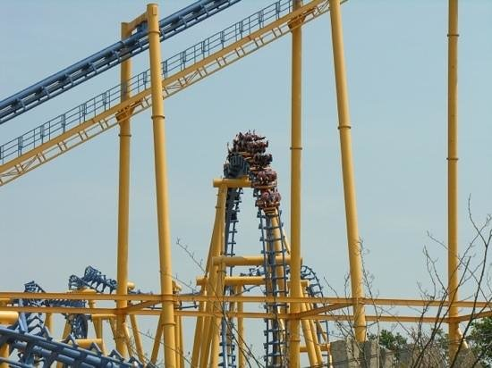 Flamingo Land ltd: one of the many attractions