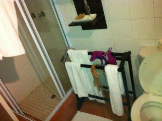 Kapama Southern Camp: Bathroom