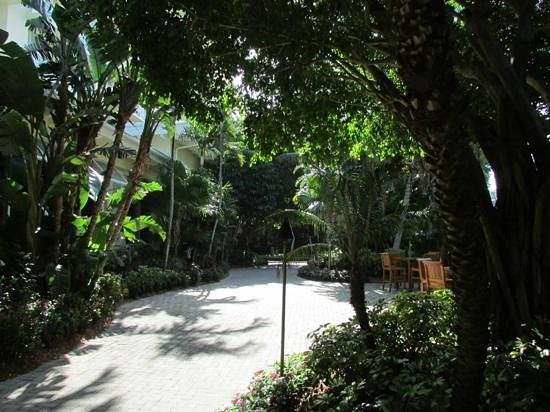 Hyatt Regency Coconut Point Resort & Spa: The courtyard heading to pool