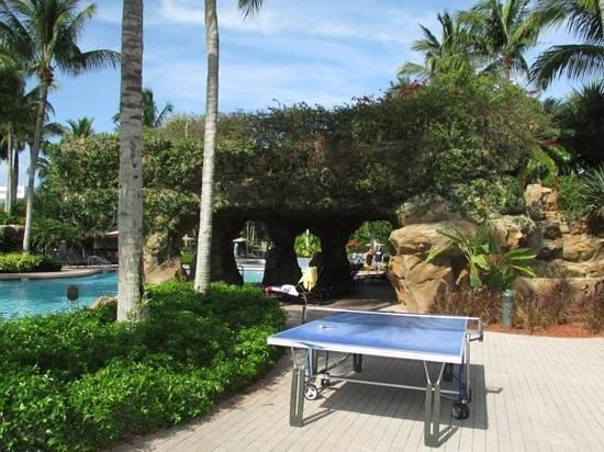 Hyatt Regency Coconut Point Resort and Spa: Pool activities at the plantation