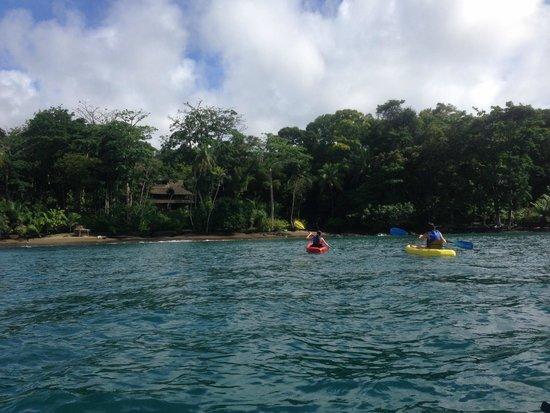 Copa de Arbol Beach and Rainforest Resort: Kayaking in front of hotel