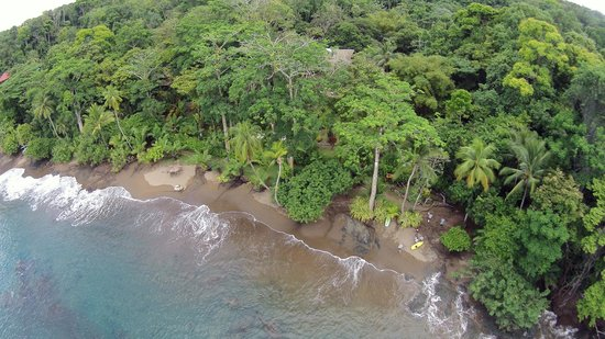 Copa de Arbol Beach and Rainforest Resort: Quadcopter view of beach and hotel