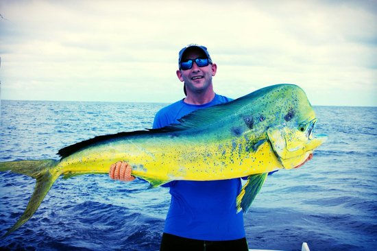 "Quepos Fish Adventure Private Day Charters: 64"" Mahi Mahi"