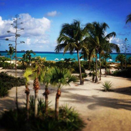 Club Med Columbus Isle: une vue.. What else !?
