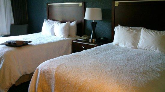 Hampton Inn & Suites Agoura Hills: Notre chambre