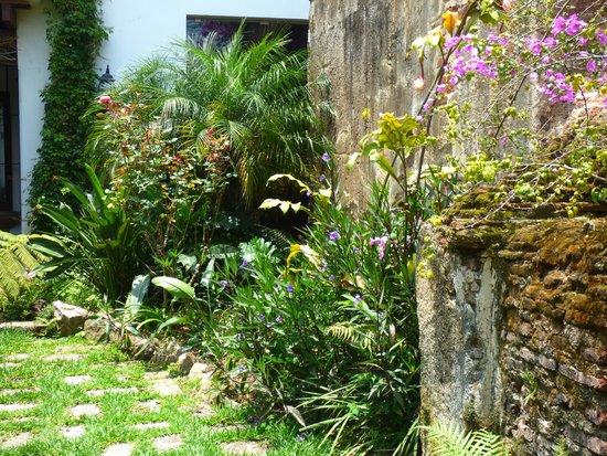 Hotel Cirilo: Hotel Gardens
