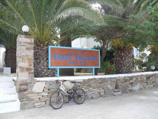 Naxos Holidays Bungalows Apartments: l'entrée de l'hôtel