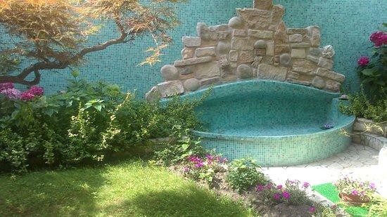 Hotel Casa Boccassini: petit bassin