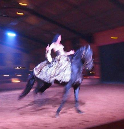 Theatre Equestre Camarkas : spectacle de belle qualité