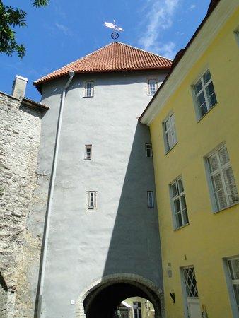 Ayuntamiento: Таллинская городская стена 1