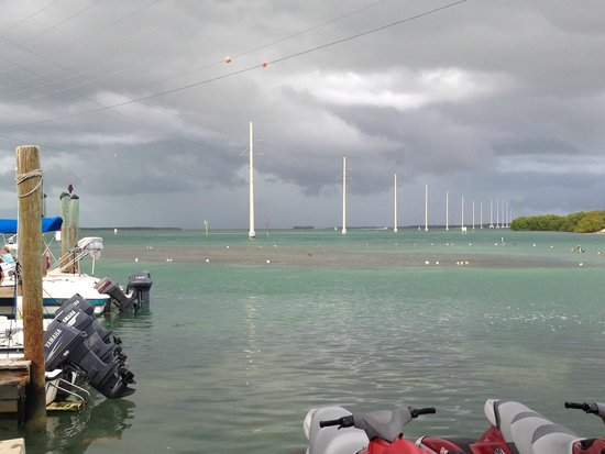 Hungry Tarpon : View from the dining area outside.