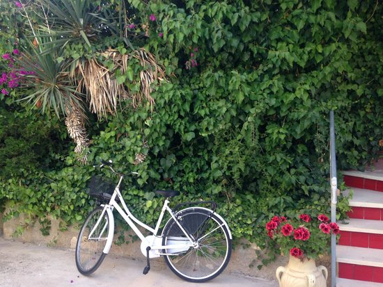 Residence Solemare : Off for a cycle