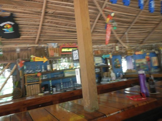 Pickled Parrot: under the palapa