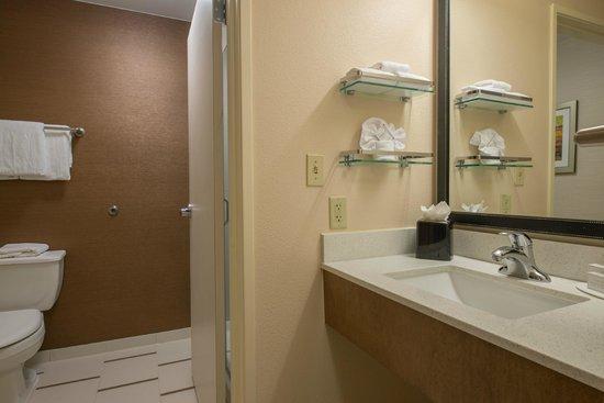 Fairfield Inn & Suites Indianapolis Northwest : Guest Bathroom