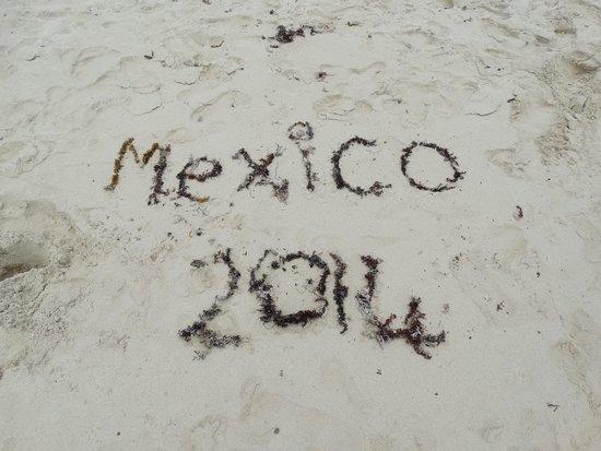 Sandos Caracol Eco Resort: MEXICO 2014