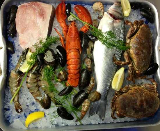 Fresh fish delivered daily picture of piccola italia for Daily fresh fish