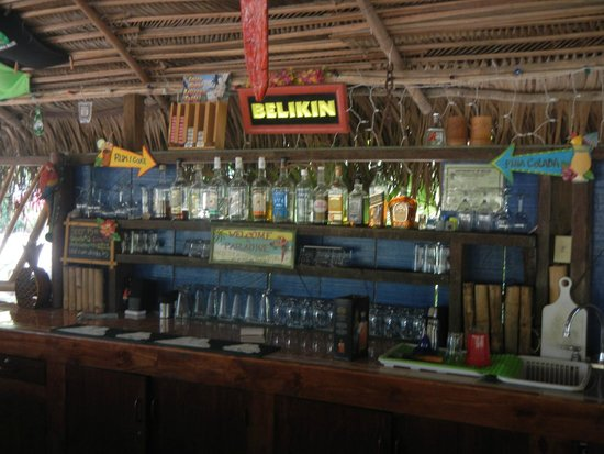 Pickled Parrot: The bar