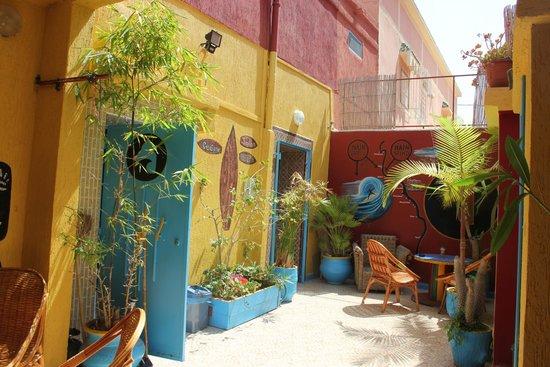 Free Surf Maroc : couleur exotique