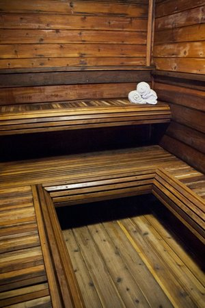 Painted Buffalo Inn: Our Dry Sauna