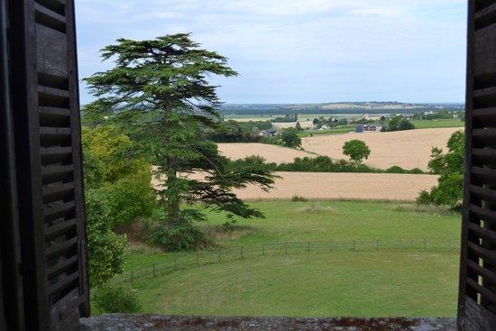 Chateau de Ternay : Vue de la chambre