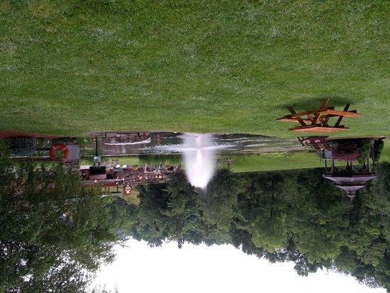 Smoke Hole Caverns & Log Cabin Resort: Trout Pond