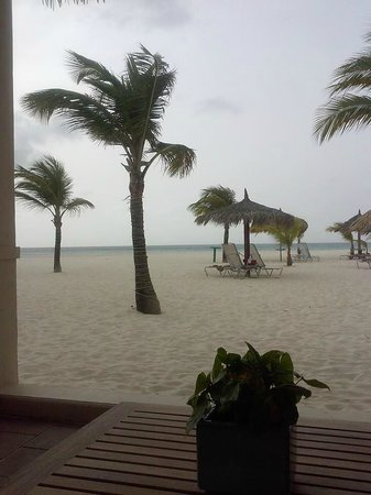 Manchebo Beach Resort & Spa : view from the pavillion.. this is also one of the location for yoga