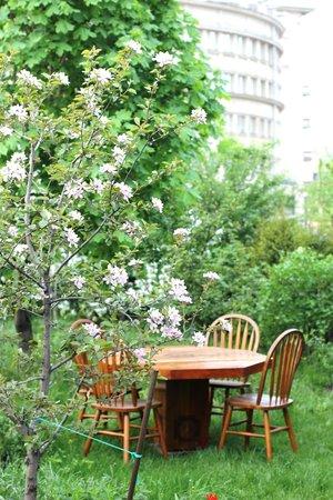 Навруз: столик в саду