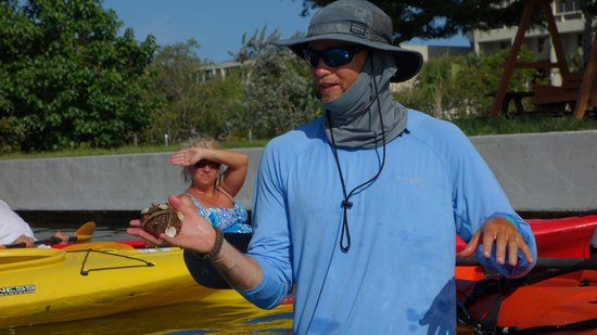 Almost Heaven Kayak Adventures : Alan sharing information about different types of sea orchings.