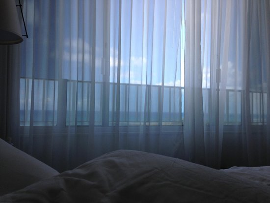 The Modern Honolulu: the perfect thing to wake up to
