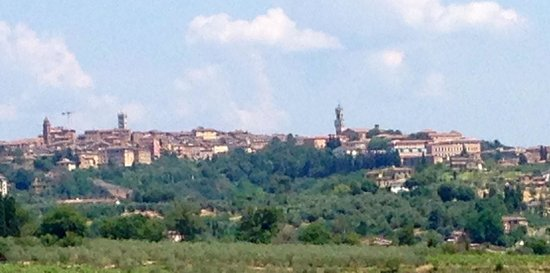 Aia Mattonata Relais: The view of Siena from the garden