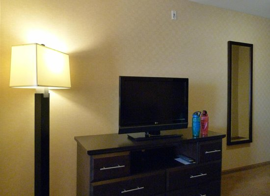 Holiday Inn Express Hotel & Suites Riverport: Junior Suite view from couch