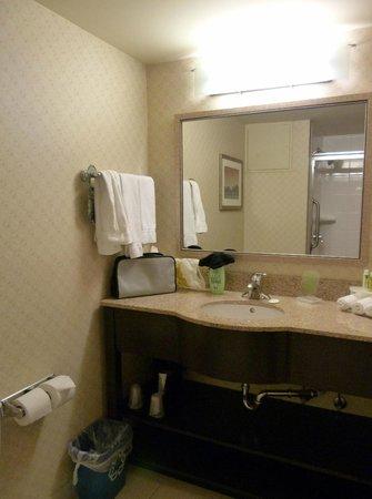 Holiday Inn Express Hotel & Suites Riverport : Junior Suite bathroom