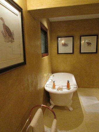 Chobe Game Lodge: bath