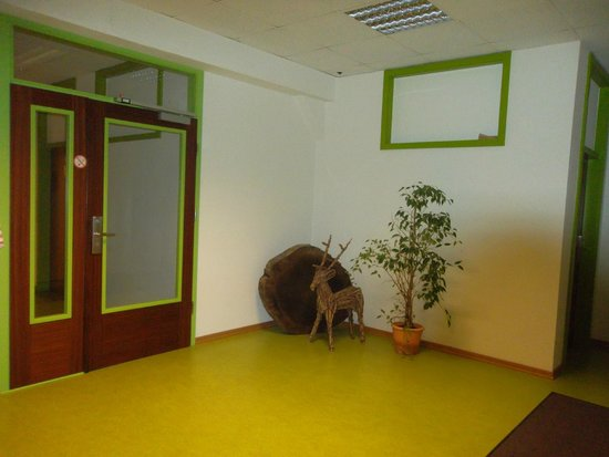 Steffi's Hostel Heidelberg: Коридор