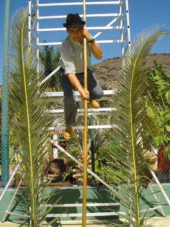 Cordial Mogan Playa: 31.Mai canarisches Fest, Die Gärtner zeigen den Gästen wie man in den Bergen schnell abwärts kom
