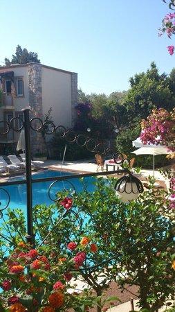 Moonshine Hotel & Suites: Вид с моего балкона