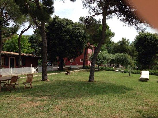 Agriturismo Ca Verde: Il giardino