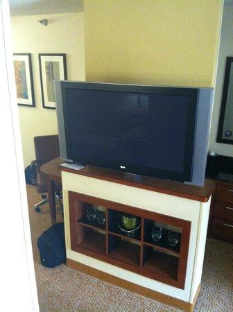 Hyatt Place Las Vegas: TV in the room