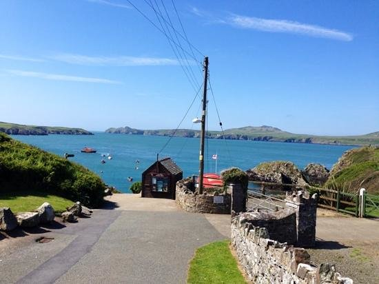 Voyages of Discovery (Ramsey Island): Ramsey boat tour