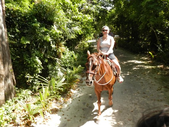 El Dorado Royale, a Spa Resort by Karisma: horse riding in the hotel grounds