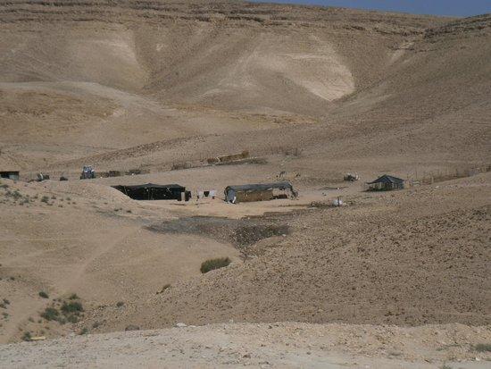 Zimmer Mantur: The desert scenery