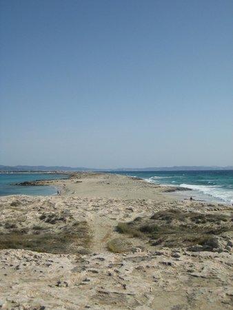 Playa de Ses Illetes: Plaja de ses Illetes