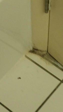 Ocean Dunes Resort & Villas : mildew on the bathroom floor