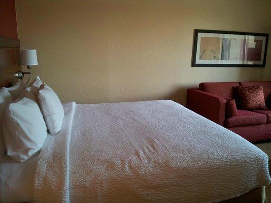 Courtyard Dallas Arlington/Entertainment District: King bed