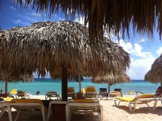 Iberostar Hacienda Dominicus : beach are and cabanas at IHD