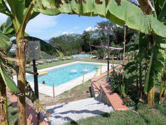 Agriturismo Il Poderaccio: La bella piscina.